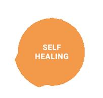 Self Healing, Ventacity Systems